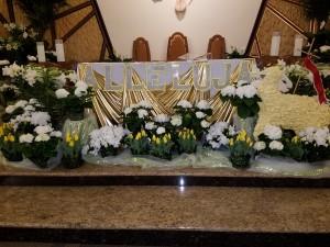 Niedziela Zmartwychwystania Pana Jezusa 2016